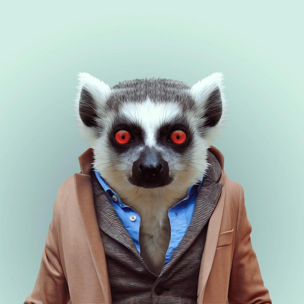 """Zoo Portraits » de Yago Partal / Tout le monde dit """"Oustiti"""""""