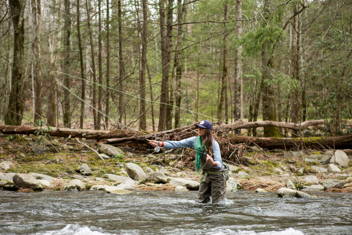 Western rise fly fishing the smokies reel fly for Rising fly fishing